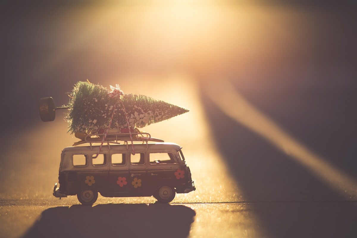 a miniature tree tied to a model VW van