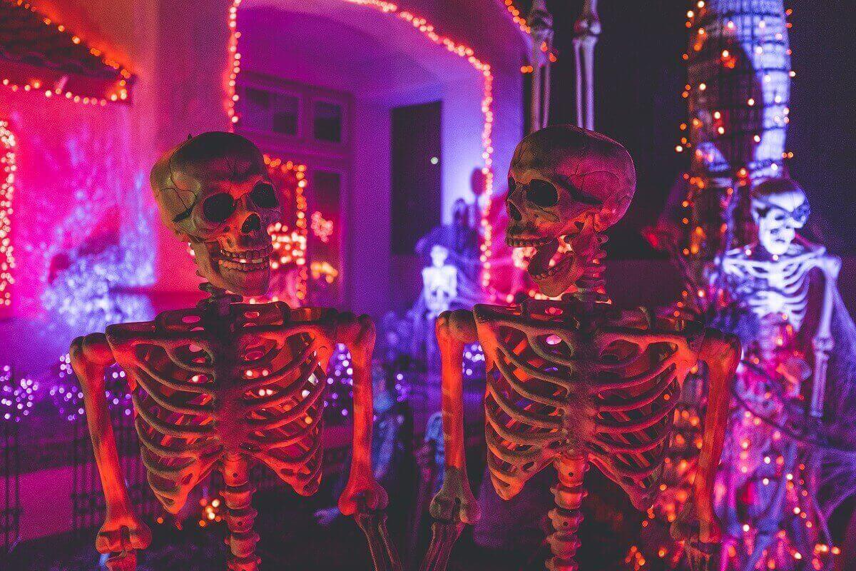 two skeletons in neon pink light